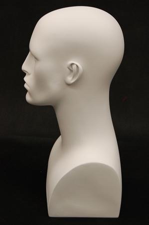 Male Mannequin Head White