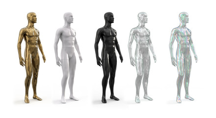 Mannequins of Different Shapes, Styles, Colors, and Sizes